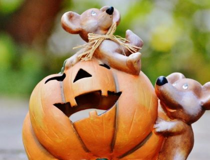 Mignonneries d'Halloween