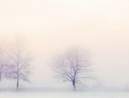 Comment se protéger du froid et rester en bonne santé pendant l'hiver