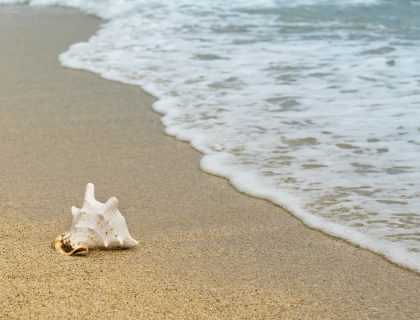 15 + accessoires de plage indispensables cet été