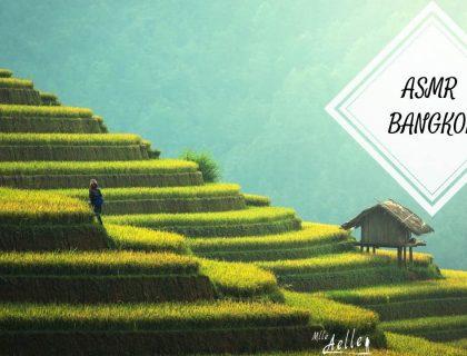 ASMR Roleplay Guide Touristique Thaïlande - Bangkok