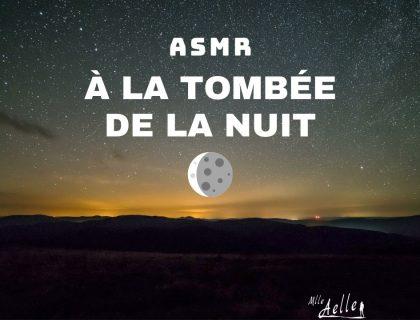 ASMR À la Tombée de la Nuit - Sons de la Nature modérés et intenses